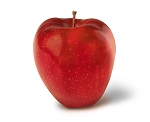 Red Delicious Apple 50 Count Gift Box