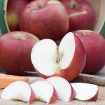 SnowSweet® Apple 12 Count Gift Box