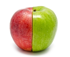 12 Apples Pick Two Varieties <BR> (Saves On Shipping)